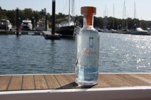 Folium on the water